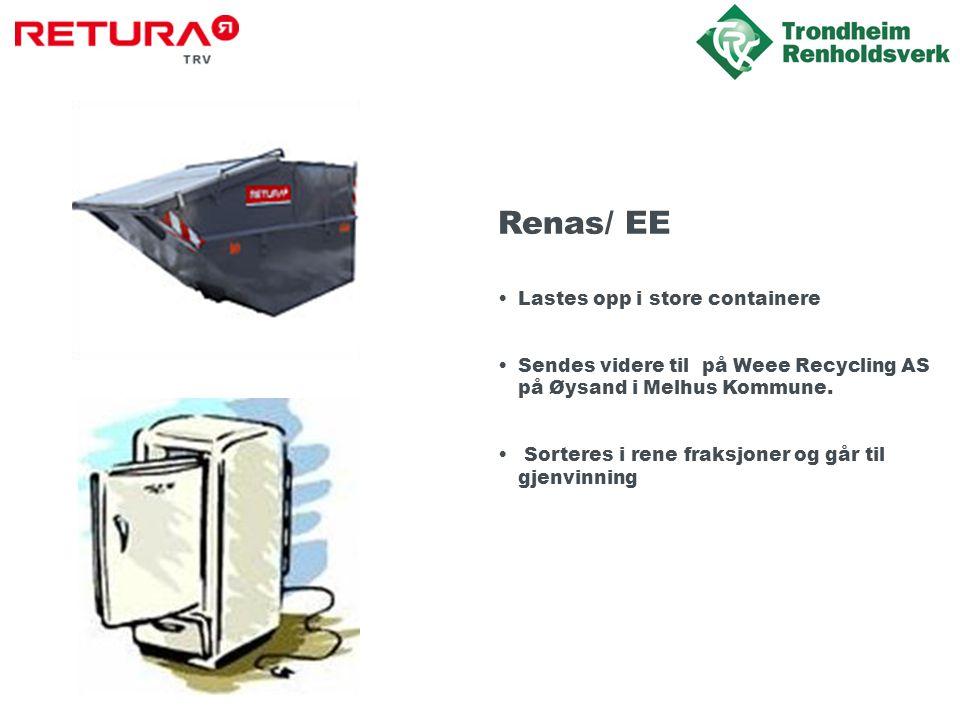 Renas/ EE •Lastes opp i store containere •Sendes videre til på Weee Recycling AS på Øysand i Melhus Kommune.
