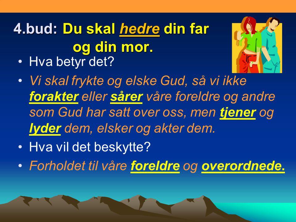 4.bud: Du skal hedre din far og din mor. •Hva betyr det? •Vi skal frykte og elske Gud, så vi ikke forakter eller sårer våre foreldre og andre som Gud