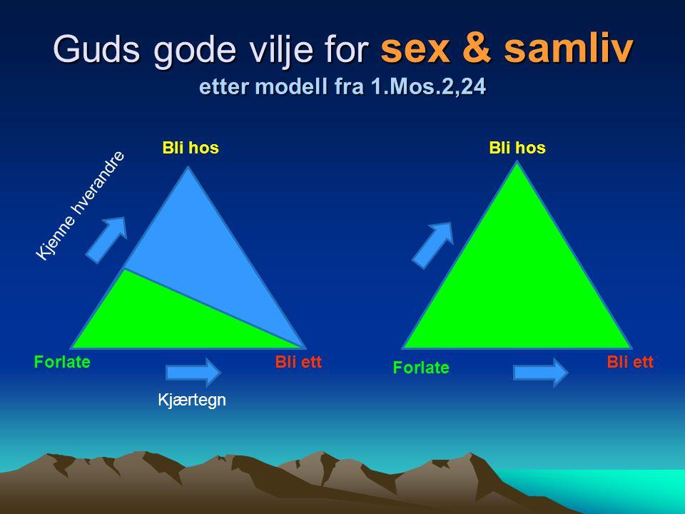 Guds gode vilje for sex & samliv etter modell fra 1.Mos.2,24 Forlate Bli hos Bli ett Kjenne hverandre Kjærtegn
