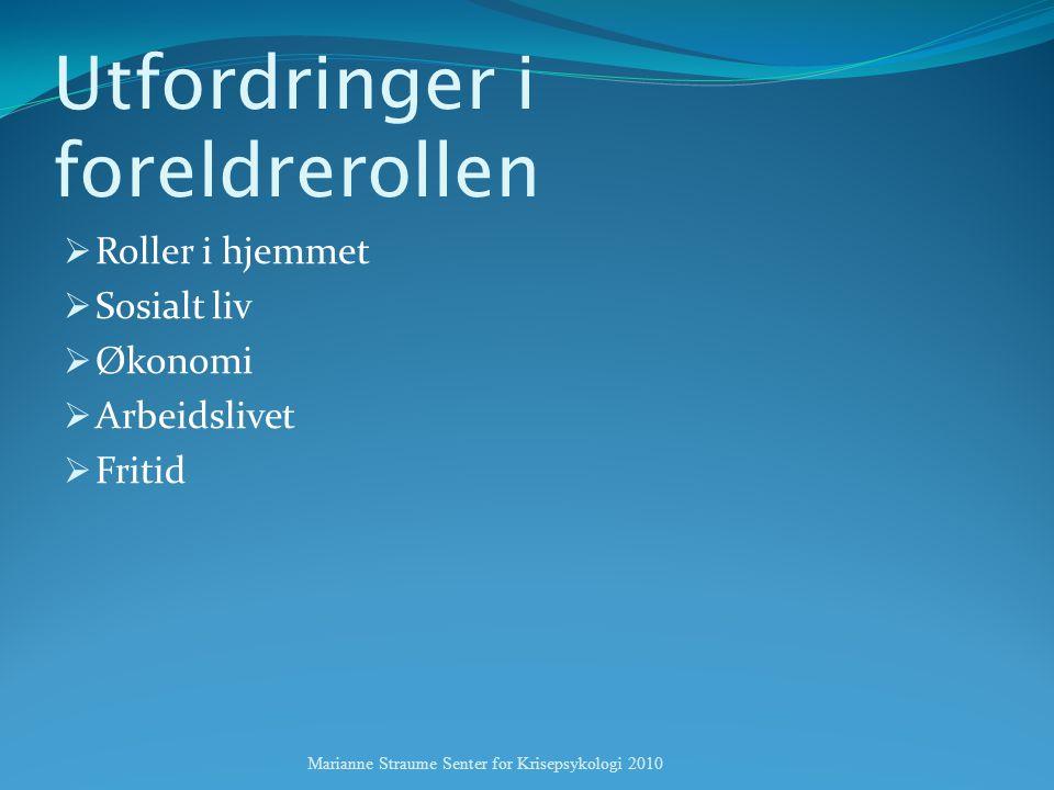 Utfordringer i foreldrerollen  Roller i hjemmet  Sosialt liv  Økonomi  Arbeidslivet  Fritid Marianne Straume Senter for Krisepsykologi 2010
