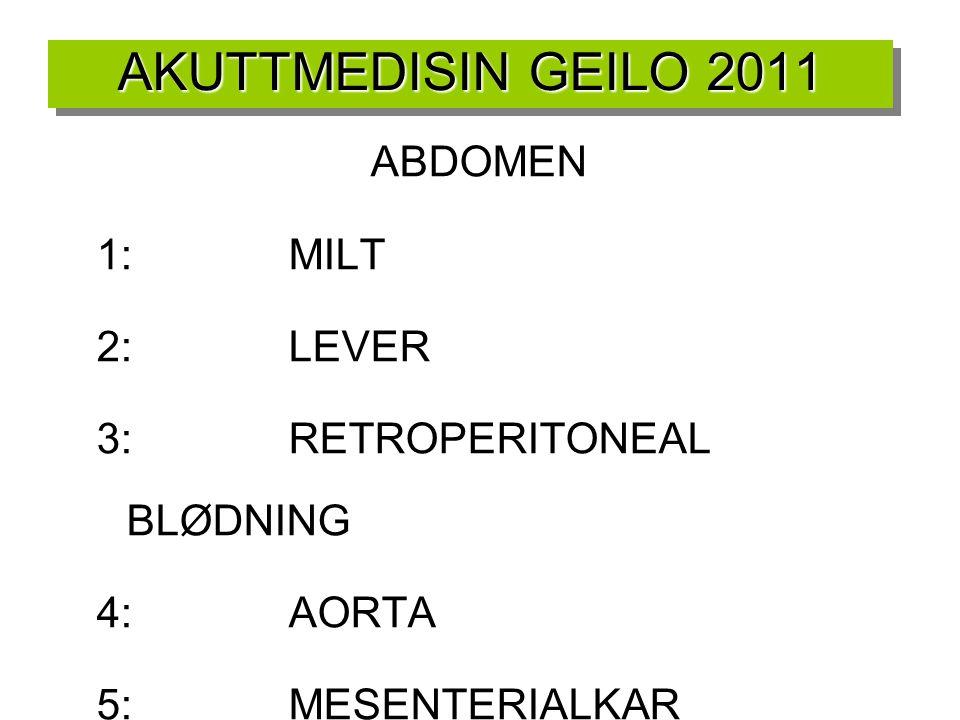 AKUTTMEDISIN GEILO 2011 ABDOMEN 1:MILT 2:LEVER 3:RETROPERITONEAL BLØDNING 4:AORTA 5:MESENTERIALKAR 6:TARM/BLÆRE/DIAFRAGMA