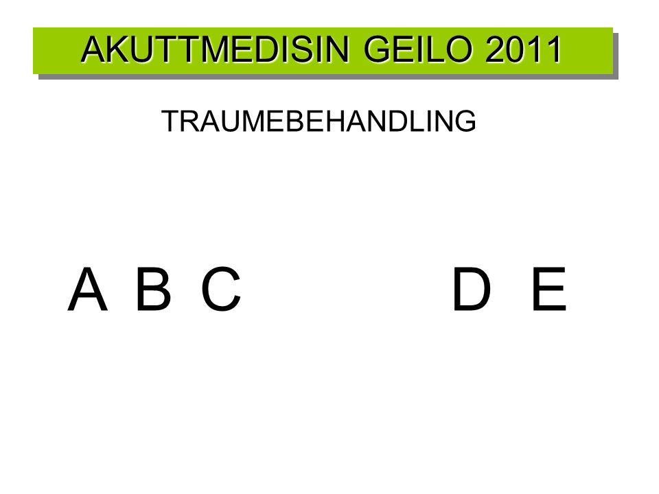 AKUTTMEDISIN GEILO 2011 TRAUMEBEHANDLING ABC DE