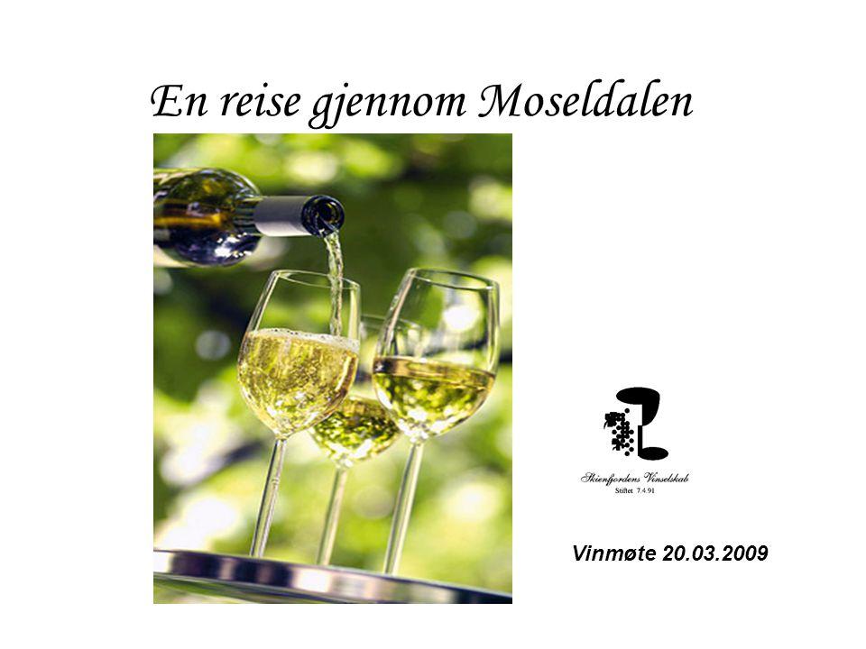 En reise gjennom Moseldalen Vinmøte 20.03.2009