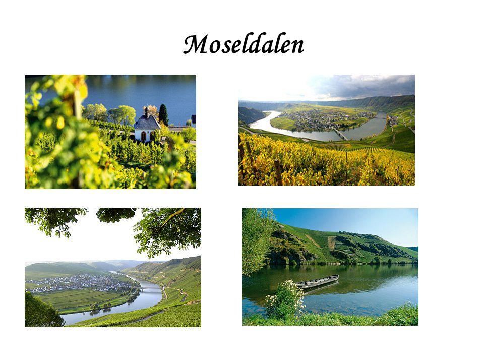 Moseldalen