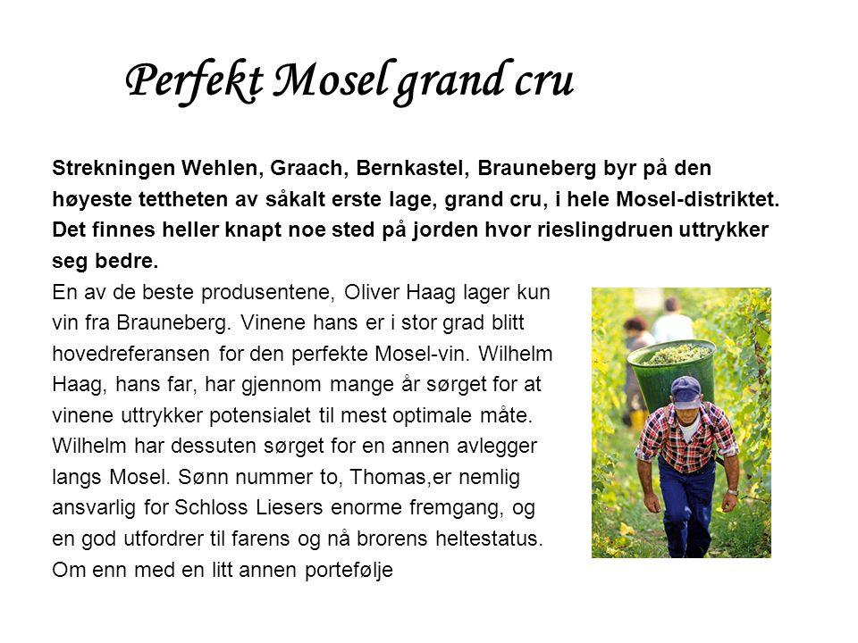 Perfekt Mosel grand cru Strekningen Wehlen, Graach, Bernkastel, Brauneberg byr på den høyeste tettheten av såkalt erste lage, grand cru, i hele Mosel-