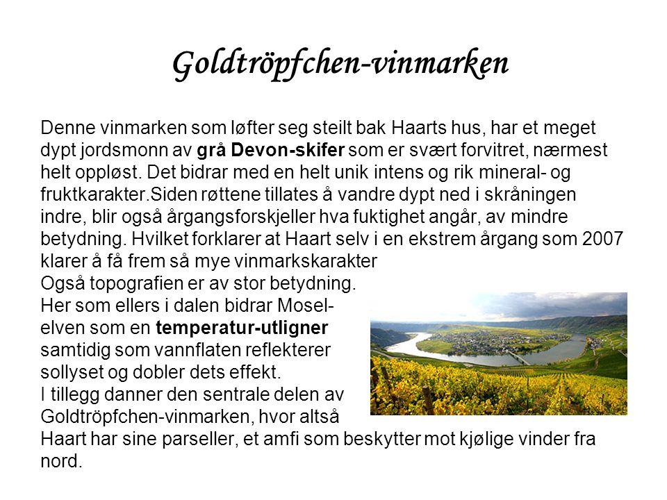 Goldtröpfchen-vinmarken Denne vinmarken som løfter seg steilt bak Haarts hus, har et meget dypt jordsmonn av grå Devon-skifer som er svært forvitret,