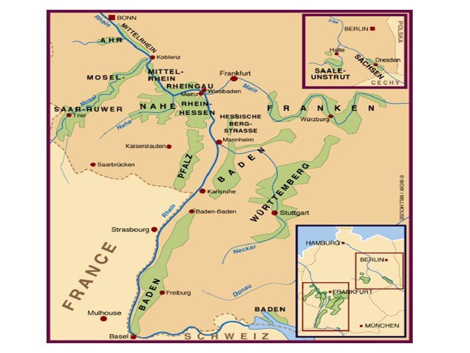 I verdenstoppen Den lille familieeide vingården ligger i den nordlige delen av Mosel-dalen, nærmere bestemt i Winningen.
