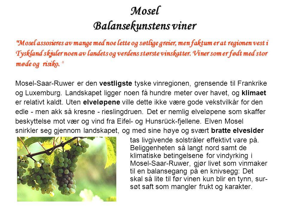 Ettertraktet Denne vinmarken som bærer sitt navn med rette, små gulldråper , er ikke uventet en av de mest berømte i hele Mosel.