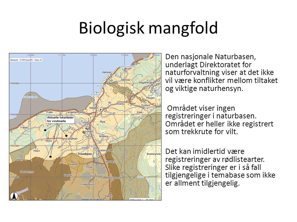 Biologisk mangfold Den nasjonale Naturbasen, underlagt Direktoratet for naturforvaltning viser at det ikke vil være konflikter mellom tiltaket og viktige naturhensyn.