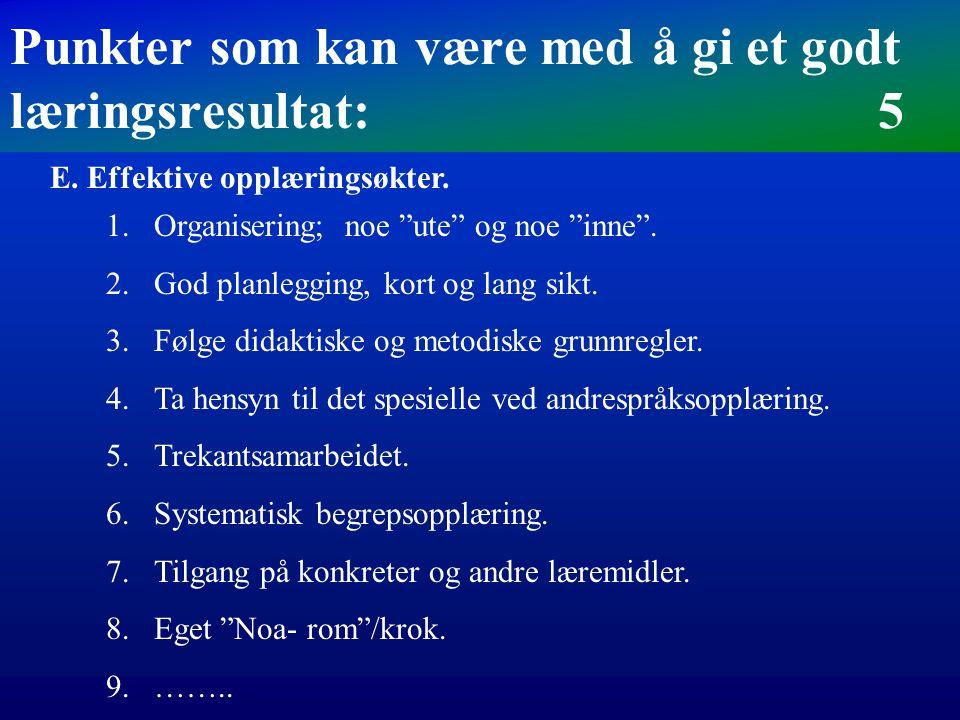 D.Trekantsamarbeidet mellom klassestyrer, norsklærer og morsmålslærere Punkter som kan være med å gi et godt læringsresultat: 4 1.For å sikre en god o