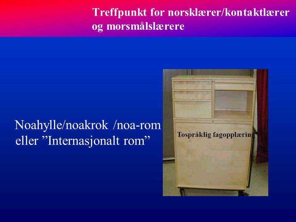 Tospråklig fagopplæring, særskilt norskopplæring og morsmålsopplæring Særskilt norskopplæring Tospråklig fagopplæring Morsmålsopplæring En kraftpakke!