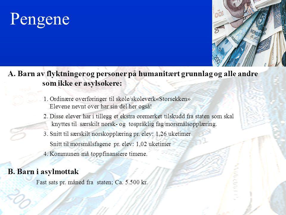 Reglene § 2-8. Særskild språkopplæring for elevar frå språklege minoritetar Elevar i grunnskolen med anna morsmål enn norsk og samisk har rett til sær