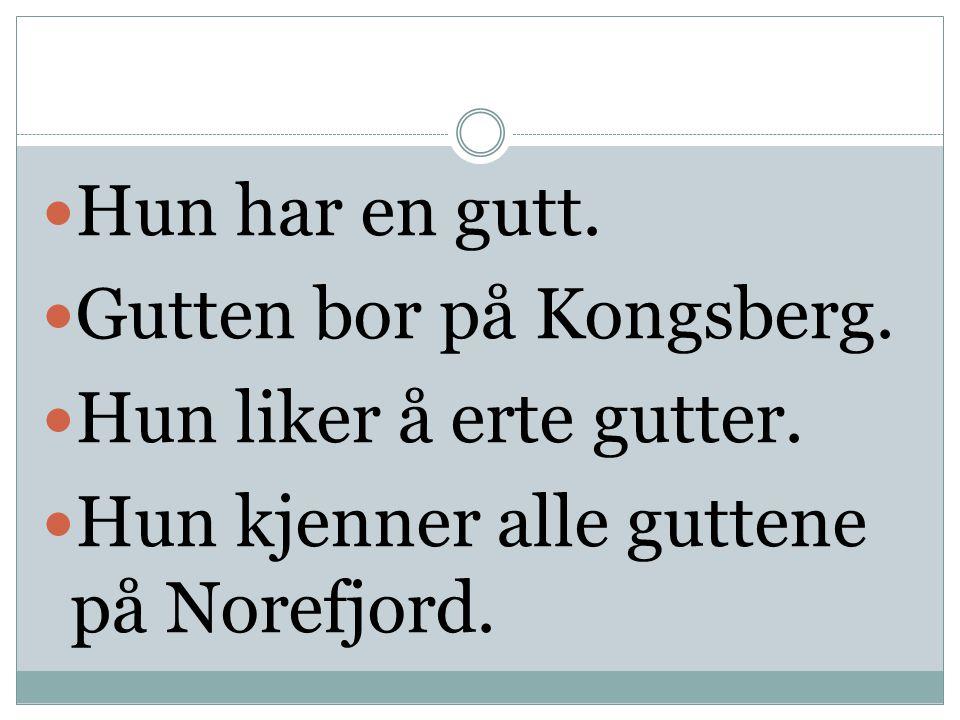  Hun har en gutt.  Gutten bor på Kongsberg.  Hun liker å erte gutter.  Hun kjenner alle guttene på Norefjord.