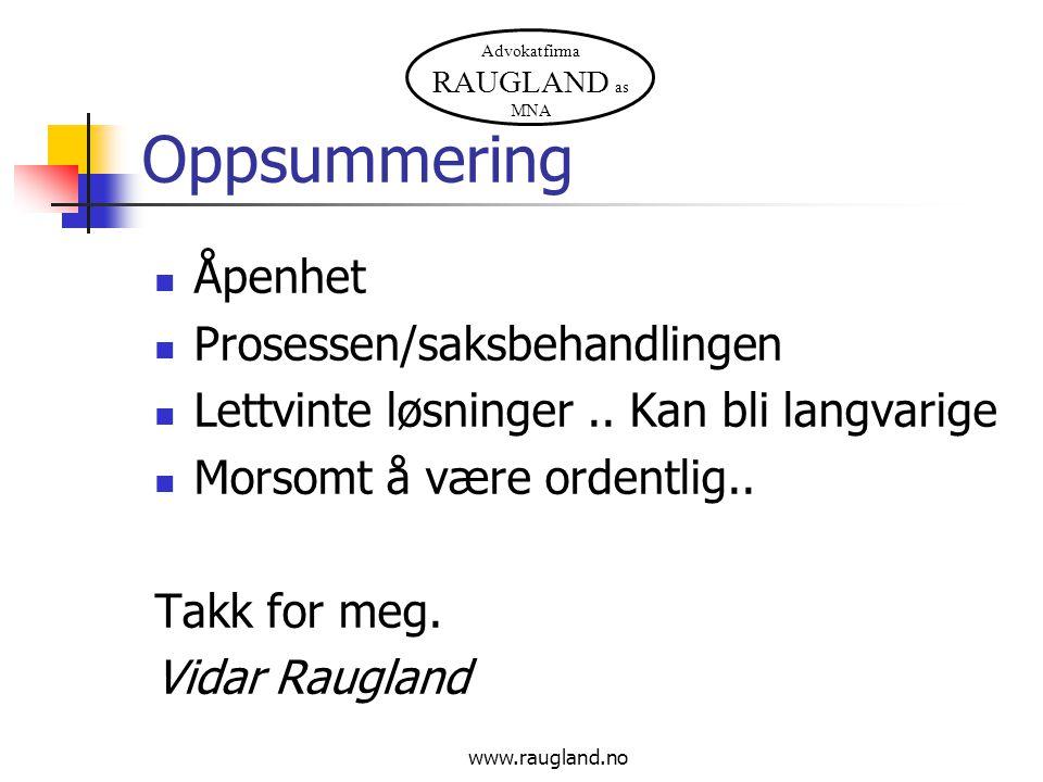 Advokatfirma RAUGLAND as MNA Oppsummering  Åpenhet  Prosessen/saksbehandlingen  Lettvinte løsninger.. Kan bli langvarige  Morsomt å være ordentlig