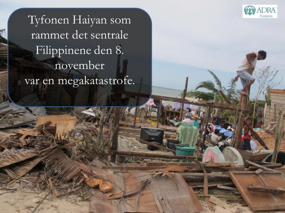 Tyfonen Haiyan som rammet det sentrale Filippinene den 8. november var en megakatastrofe.