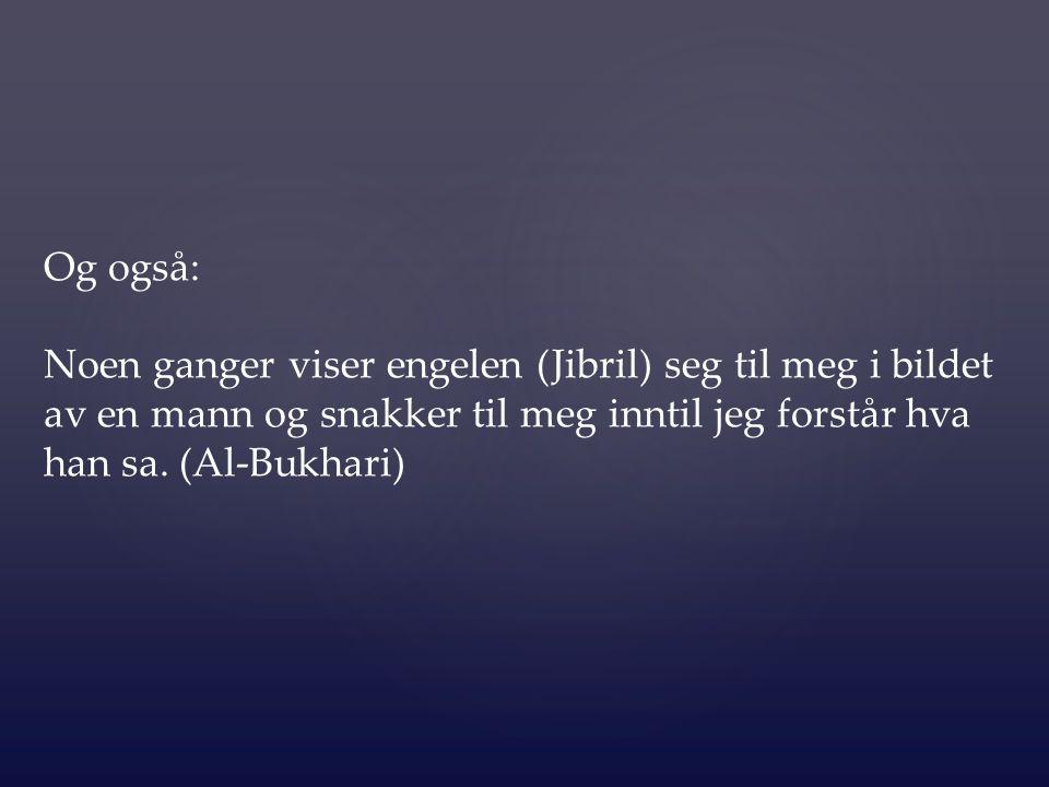3.Et stort antall av følgesvennene til Profeten ( ﷺ ) så englene på dagen av (Badr).