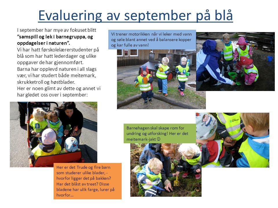 Evaluering av september på blå Vi trener motorikken når vi leker med vann og søle blant annet ved å balansere kopper og kar fulle av vann! Barnehagen