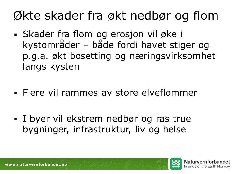 www.naturvernforbundet.no Økte skader fra økt nedbør og flom  Skader fra flom og erosjon vil øke i kystområder – både fordi havet stiger og p.g.a. øk