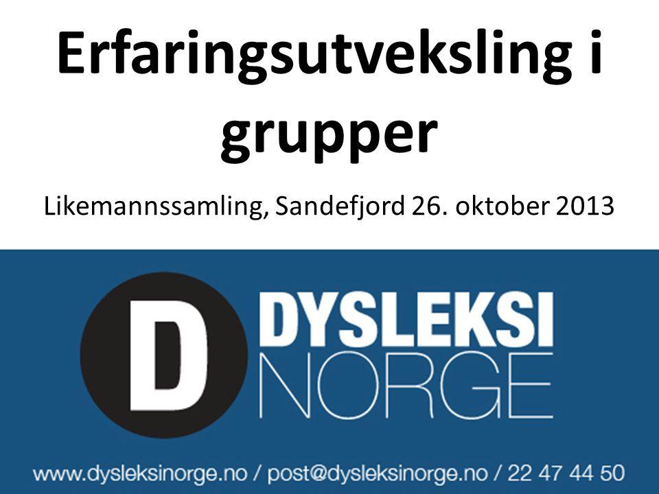 Erfaringsutveksling i grupper Likemannssamling, Sandefjord 26. oktober 2013