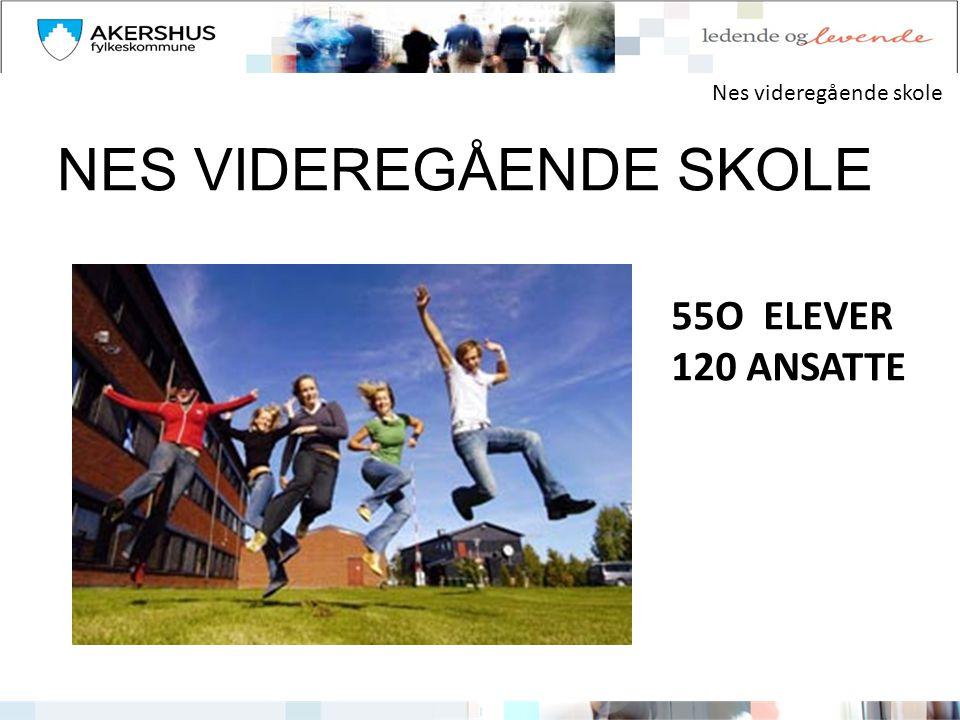 Nes videregående skole NES VIDEREGÅENDE SKOLE 55O ELEVER 120 ANSATTE