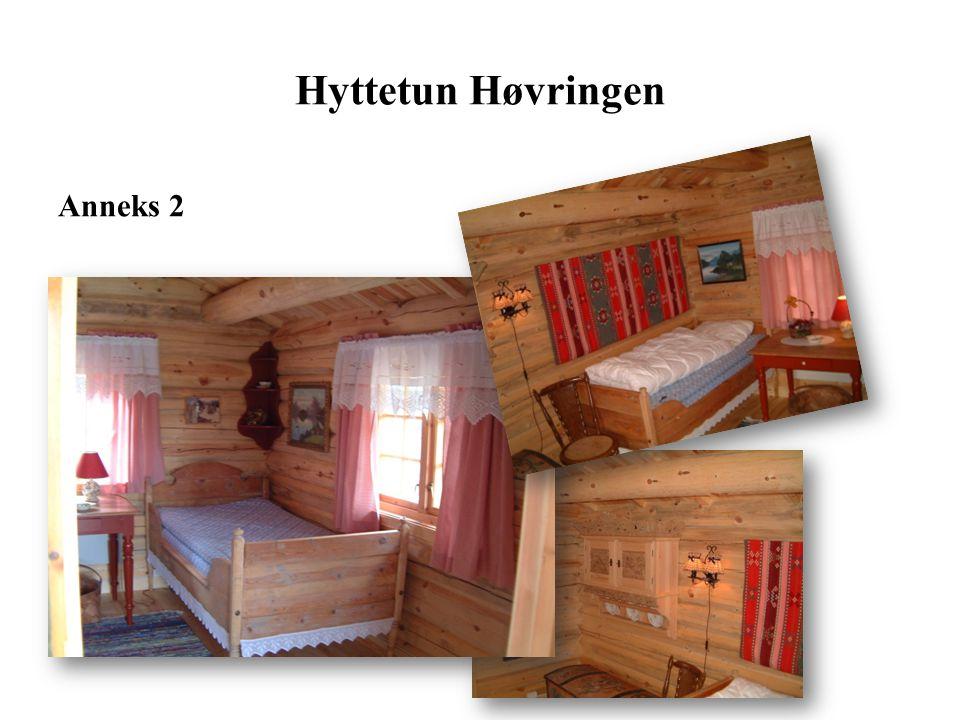 Stue /peis Hyttetun Høvringen