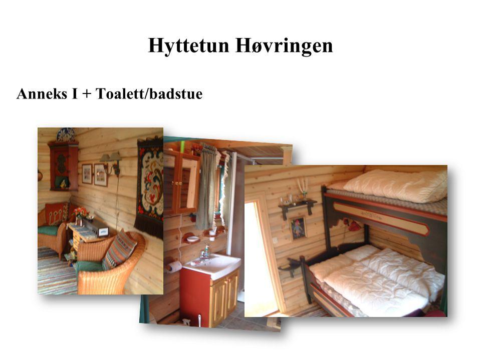 Anneks 2 Hyttetun Høvringen