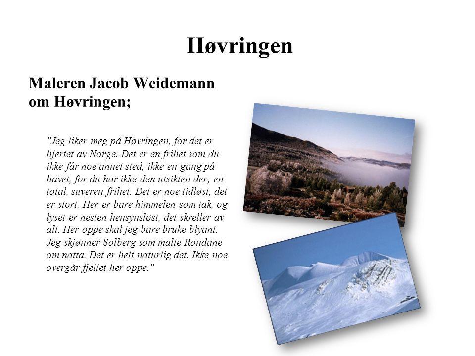 Høvringen Maleren Jacob Weidemann om Høvringen; Jeg liker meg på Høvringen, for det er hjertet av Norge.