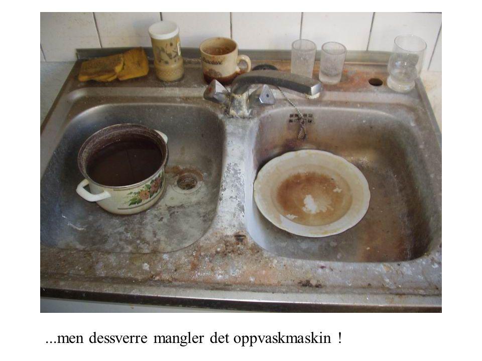 ...men dessverre mangler det oppvaskmaskin !