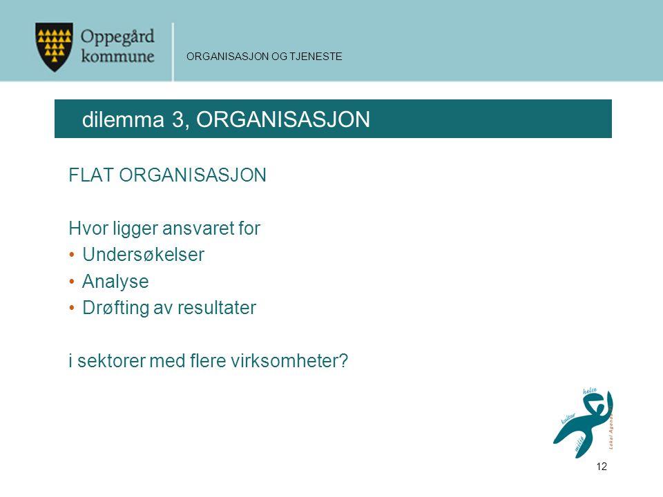12 ORGANISASJON OG TJENESTE dilemma 3, ORGANISASJON FLAT ORGANISASJON Hvor ligger ansvaret for •Undersøkelser •Analyse •Drøfting av resultater i sektorer med flere virksomheter?
