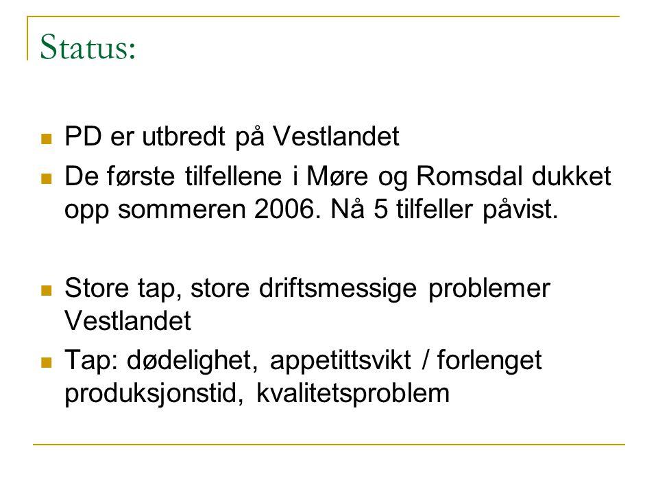 Status:  PD er utbredt på Vestlandet  De første tilfellene i Møre og Romsdal dukket opp sommeren 2006. Nå 5 tilfeller påvist.  Store tap, store dri