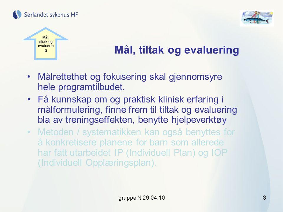 gruppe N 29.04.104 Tema for samlingen Mål med et kortsiktig tidsperspektiv