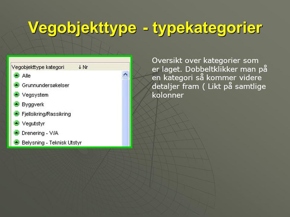 Vegobjekttype - typekategorier Oversikt over kategorier som er laget. Dobbeltklikker man på en kategori så kommer videre detaljer fram ( Likt på samtl