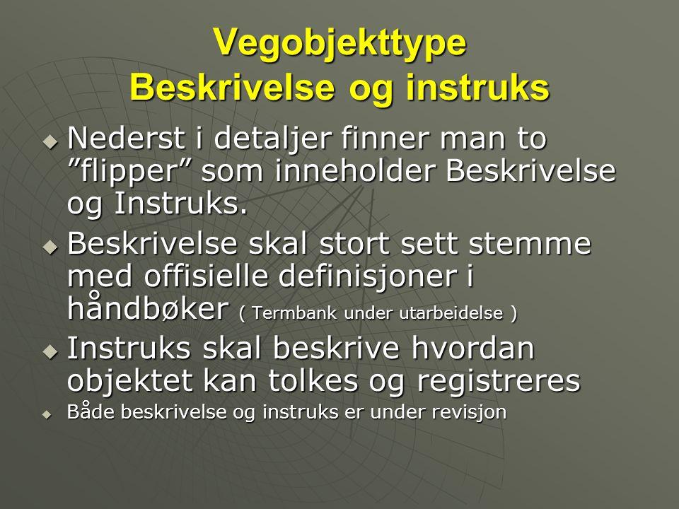 """Vegobjekttype Beskrivelse og instruks  Nederst i detaljer finner man to """"flipper"""" som inneholder Beskrivelse og Instruks.  Beskrivelse skal stort se"""