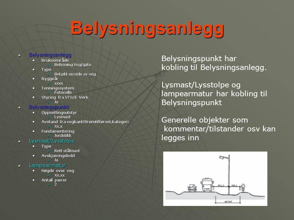 Belysningsanlegg  Belysningsanlegg •Bruksområde  Belysning Veg/gate •Type  Bel.pkt en side av veg •Byggeår  xxxx •Tenningssystem  Fotocelle •Styr