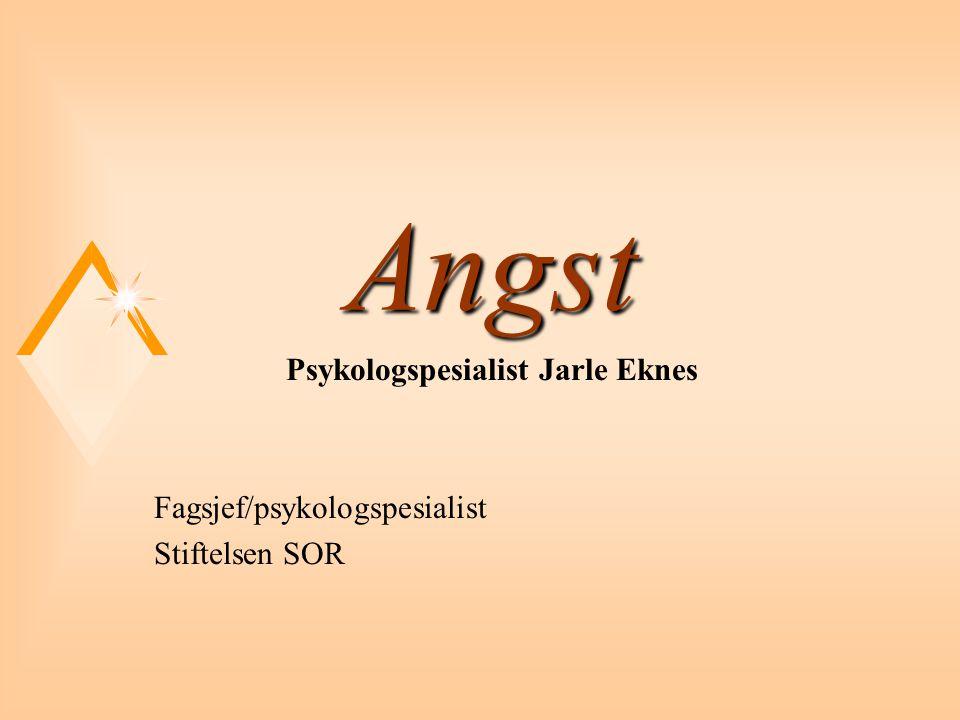 Angst2 u Utviklingshemming og psykisk helse u Jarle Eknes (red.) u Universitetsforlaget u 520 sider u kr 398,- u www.habil.net