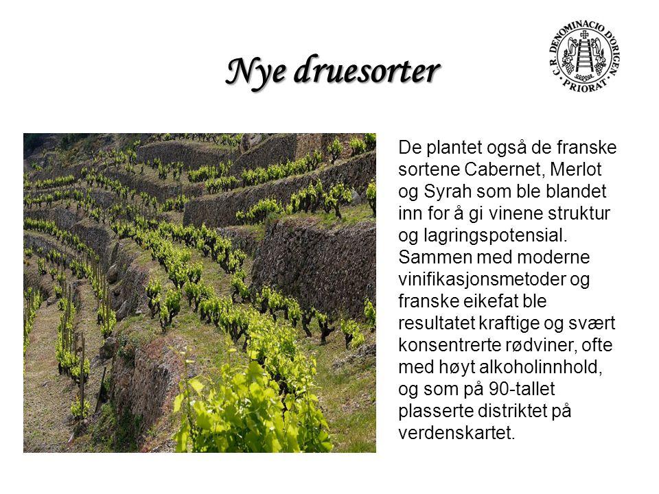 Nye druesorter De plantet også de franske sortene Cabernet, Merlot og Syrah som ble blandet inn for å gi vinene struktur og lagringspotensial. Sammen