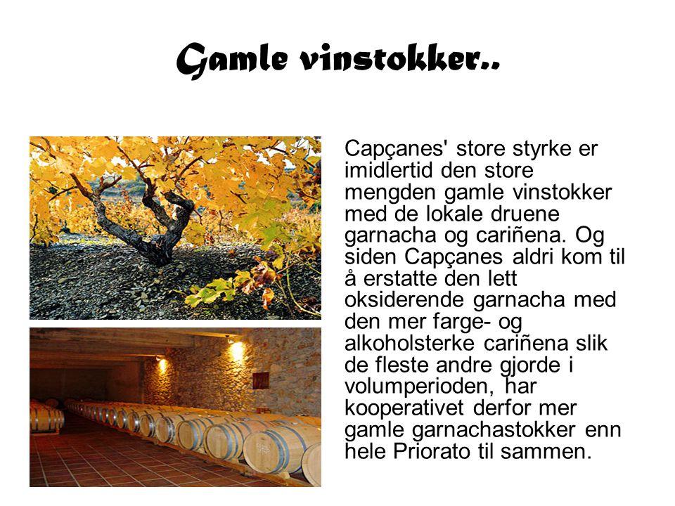 Capçanes' store styrke er imidlertid den store mengden gamle vinstokker med de lokale druene garnacha og cariñena. Og siden Capçanes aldri kom til å e