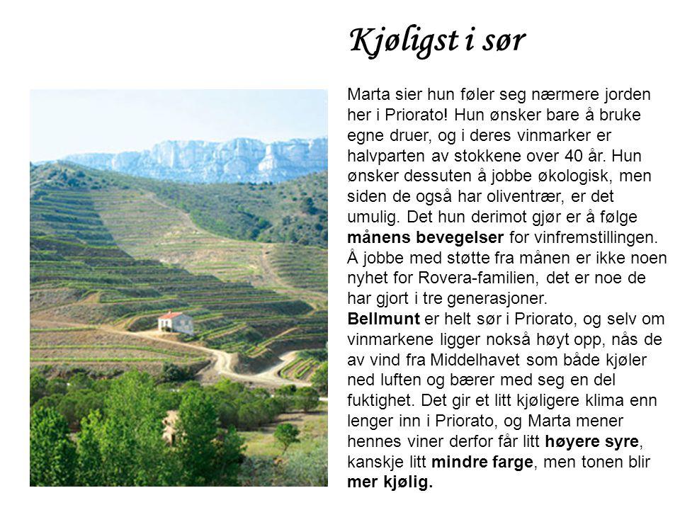 Kjøligst i sør Marta sier hun føler seg nærmere jorden her i Priorato! Hun ønsker bare å bruke egne druer, og i deres vinmarker er halvparten av stokk