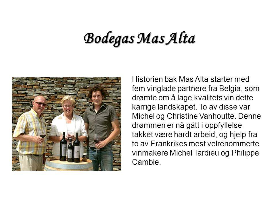 Historien bak Mas Alta starter med fem vinglade partnere fra Belgia, som drømte om å lage kvalitets vin dette karrige landskapet. To av disse var Mich