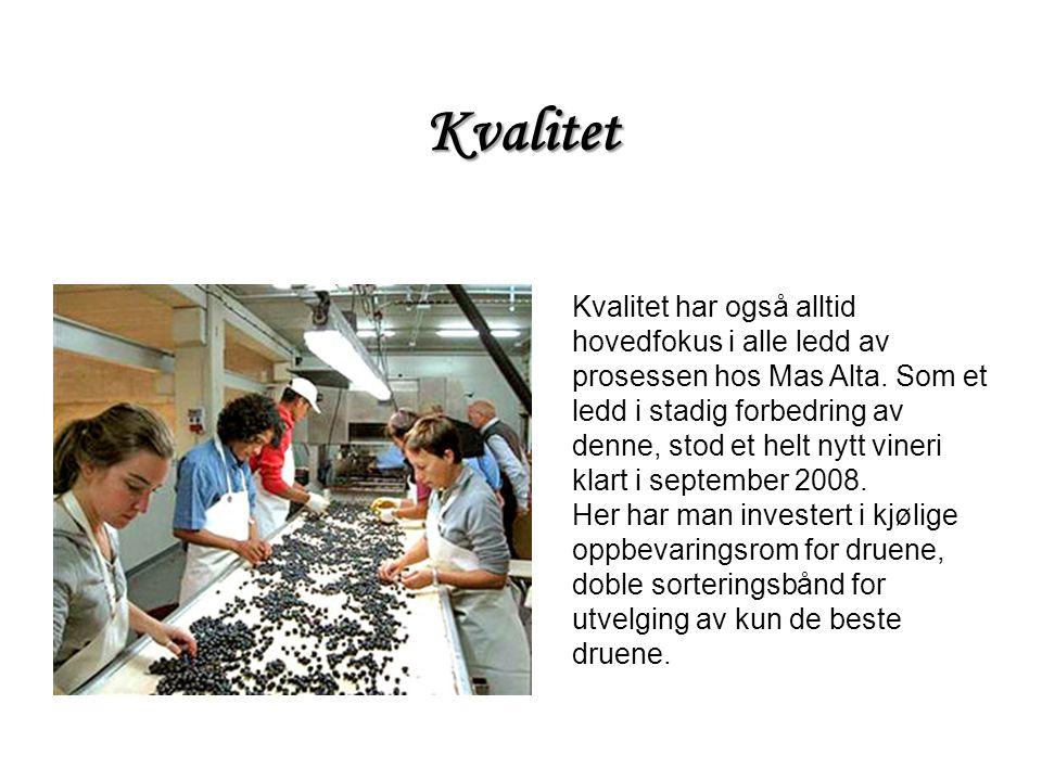 Kvalitet har også alltid hovedfokus i alle ledd av prosessen hos Mas Alta. Som et ledd i stadig forbedring av denne, stod et helt nytt vineri klart i