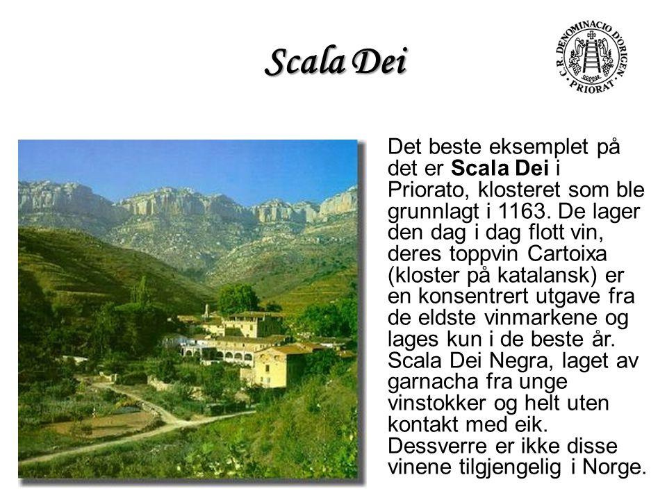 Scala Dei Det beste eksemplet på det er Scala Dei i Priorato, klosteret som ble grunnlagt i 1163. De lager den dag i dag flott vin, deres toppvin Cart