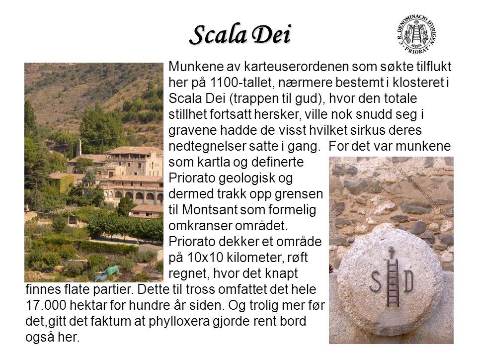 Scala Dei Munkene av karteuserordenen som søkte tilflukt her på 1100-tallet, nærmere bestemt i klosteret i Scala Dei (trappen til gud), hvor den total