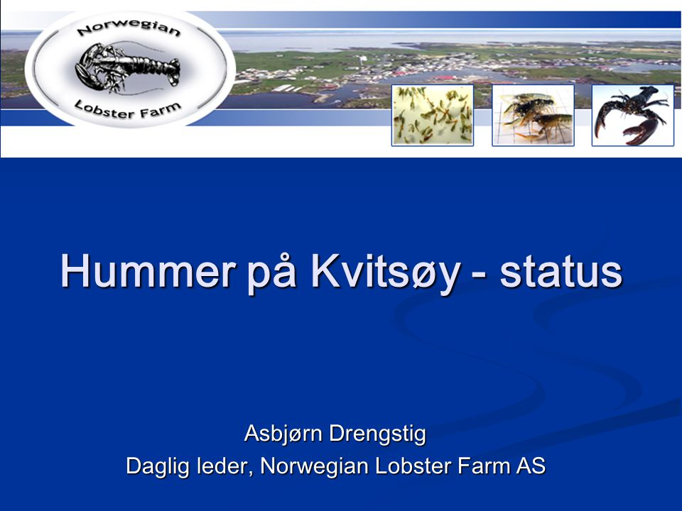 Hummer på Kvitsøy - status Asbjørn Drengstig Daglig leder, Norwegian Lobster Farm AS