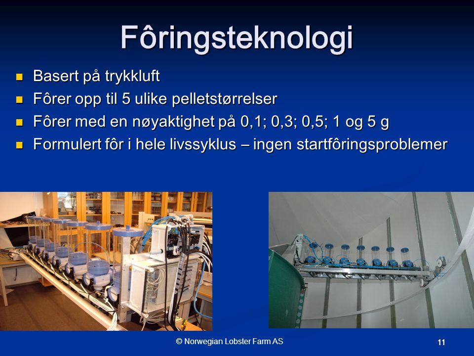 © Norwegian Lobster Farm AS 11 Fôringsteknologi  Basert på trykkluft  Fôrer opp til 5 ulike pelletstørrelser  Fôrer med en nøyaktighet på 0,1; 0,3; 0,5; 1 og 5 g  Formulert fôr i hele livssyklus – ingen startfôringsproblemer
