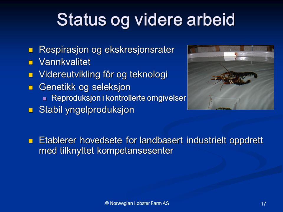 © Norwegian Lobster Farm AS 17 Status og videre arbeid  Respirasjon og ekskresjonsrater  Vannkvalitet  Videreutvikling fôr og teknologi  Genetikk og seleksjon  Reproduksjon i kontrollerte omgivelser  Stabil yngelproduksjon  Etablerer hovedsete for landbasert industrielt oppdrett med tilknyttet kompetansesenter