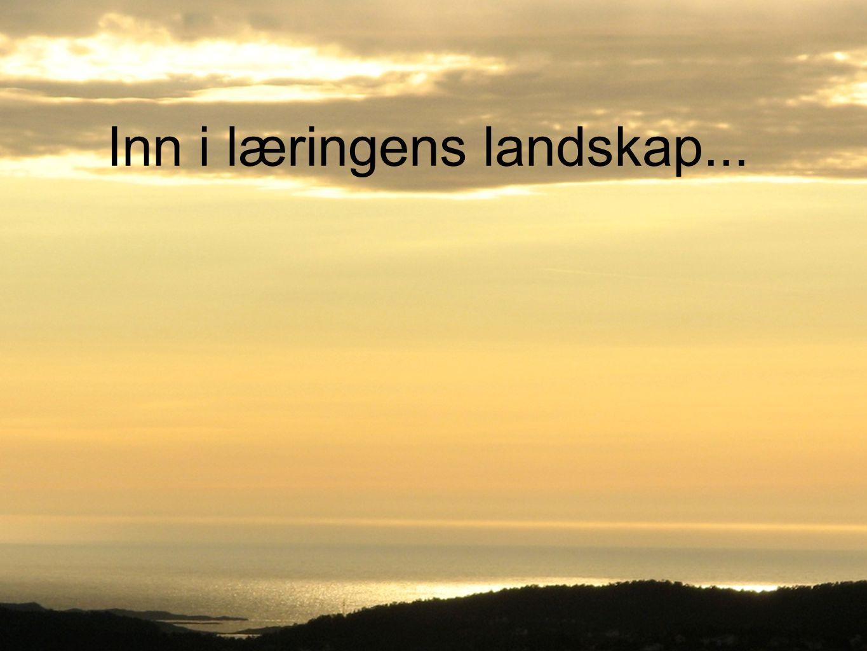 Inn i læringens landskap...