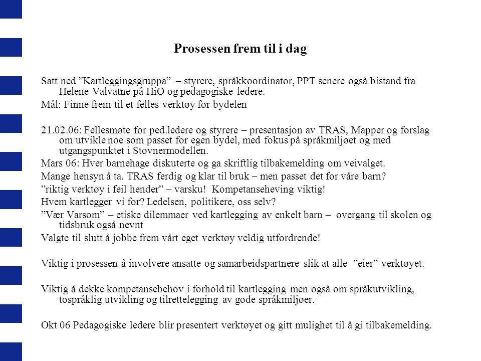 """Prosessen frem til i dag Satt ned """"Kartleggingsgruppa"""" – styrere, språkkoordinator, PPT senere også bistand fra Helene Valvatne på HiO og pedagogiske"""