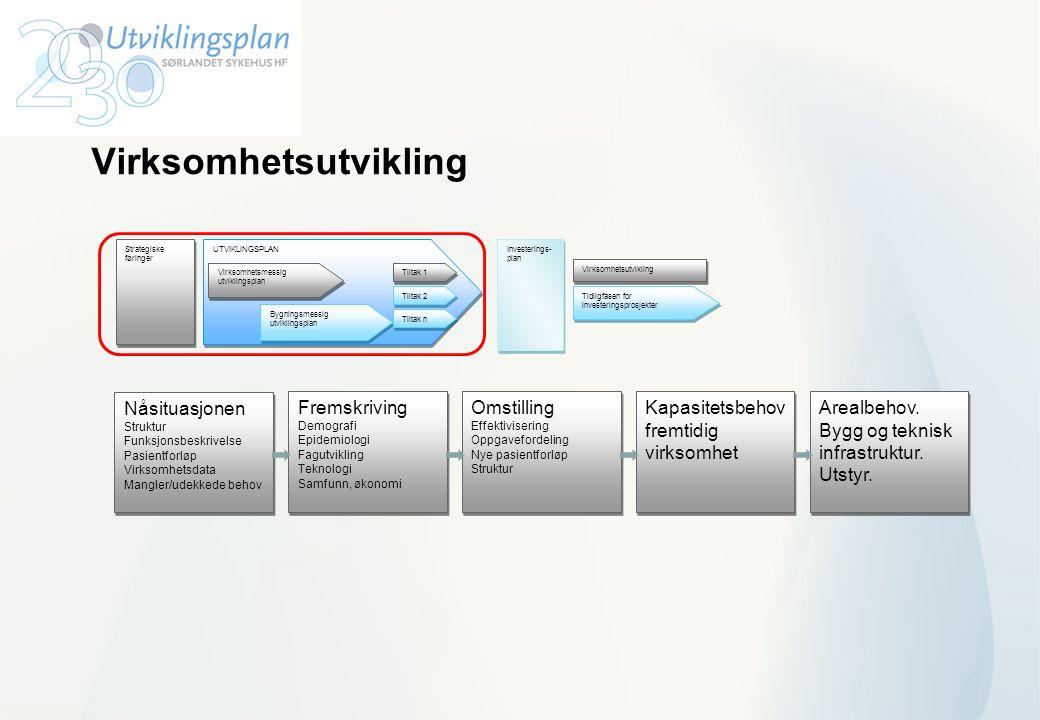 Virksomhetsutvikling UTVIKLINGSPLAN Virksomhetsmessig utviklingsplan Bygningsmessig utviklingsplan Tiltak 1 Tiltak n Investerings- plan Investerings-