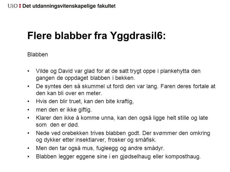 Flere blabber fra Yggdrasil6: Blabben •Vilde og David var glad for at de satt trygt oppe i plankehytta den gangen de oppdaget blabben i bekken. •De sy