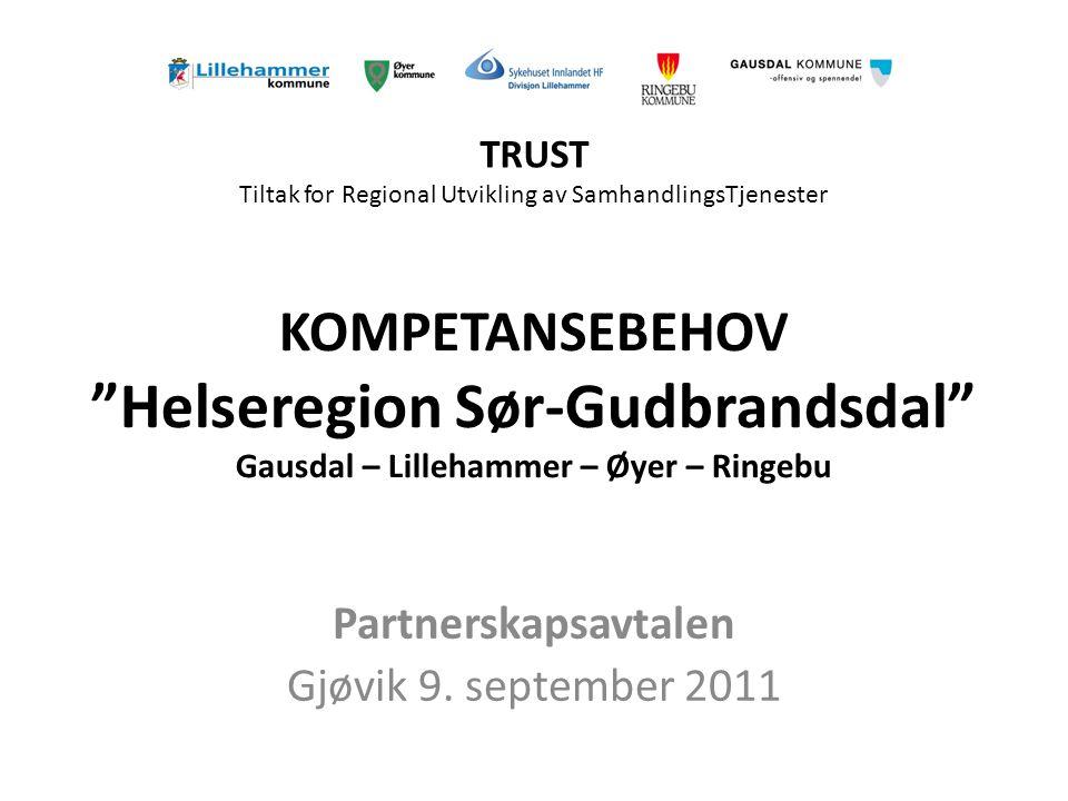 KOMPETANSEBEHOV Helseregion Sør-Gudbrandsdal Gausdal – Lillehammer – Øyer – Ringebu Partnerskapsavtalen Gjøvik 9.